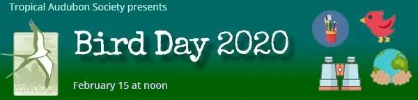 Bird Day 2020 with Tropical Audubon Society