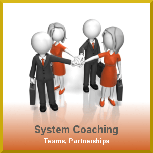 system coaching