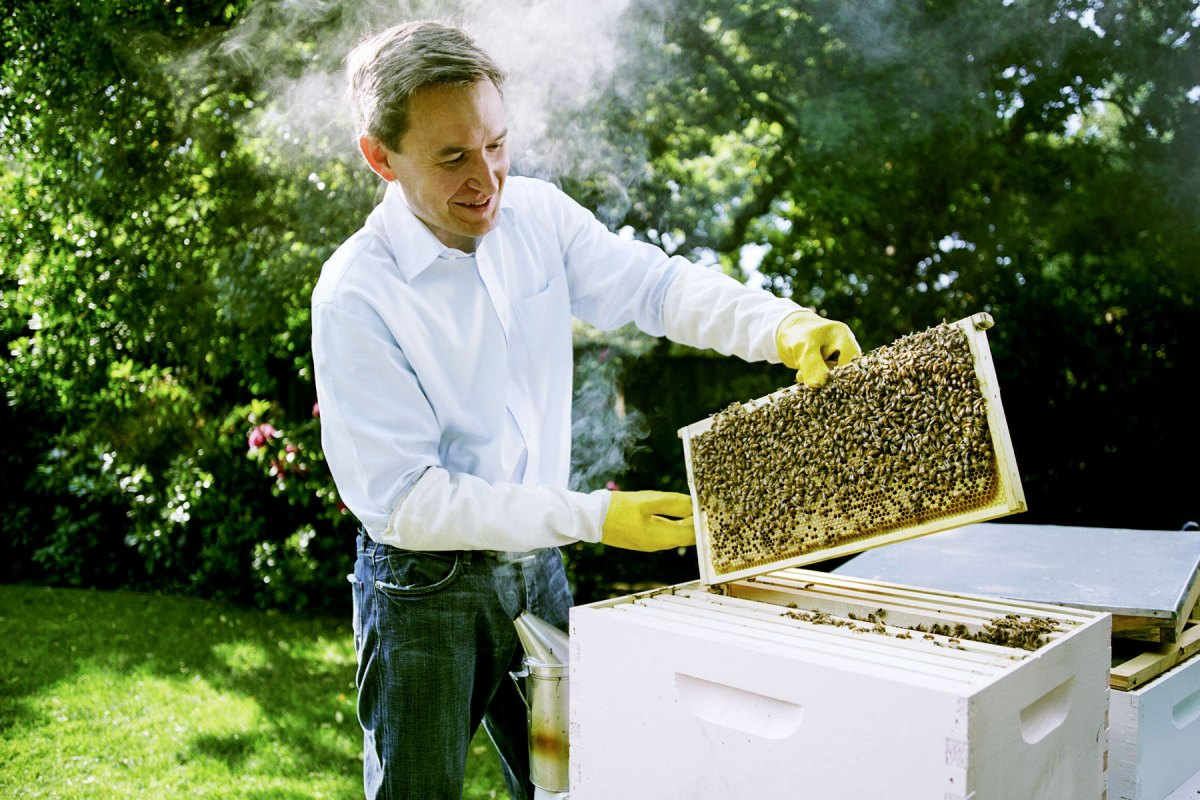 Beekeeper for INC magazine.