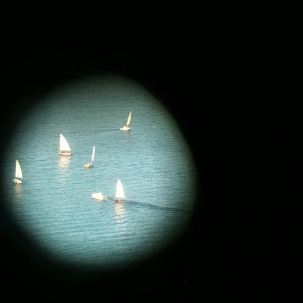 Dinghies sailing