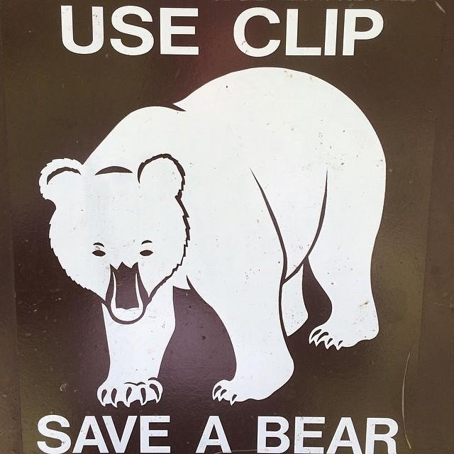Use clip, save bear.