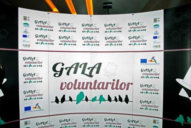 Gala Voluntarilor 2013