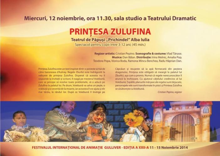 caiet program 2014-page8
