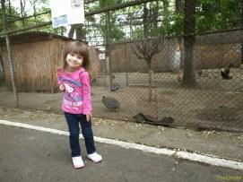 Sara la Zoo Braila Romania 27