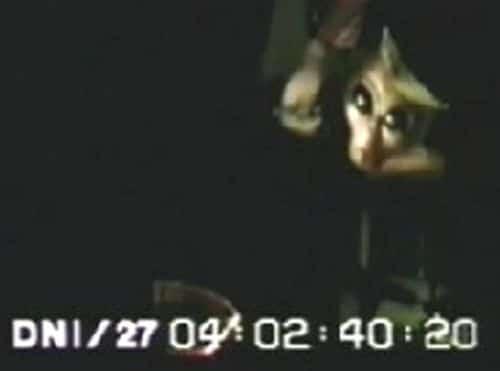 [Video] Interviu cu un extraterestru