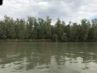 Din barca 2