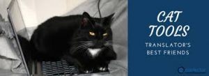 CAT Tool: utili o no?