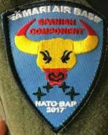 Emblema de la Fuerza Aérea de Estonia obsequiado a cada piloto que integró el destacamento (foto: vía Miguel Ángel Blázquez)