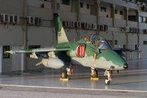 AMX A-1B FAB (photo: Ronald de Roig)