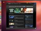 screenshot-client-steam-pentru-linux-3