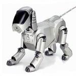 ソニー、イヌ型の家庭用ロボットを来年の春にも発売キタ━━━━(゚∀゚)━━━━!!