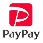 PayPay100億円あげちゃうキャンペーン始まったけど