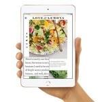 iPad mini欲しいんやがセルラーモデルとWi-Fiモデル