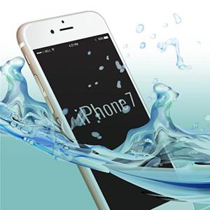 iphone wp