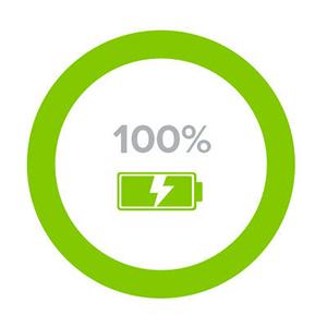 Battery-graph-100_1x