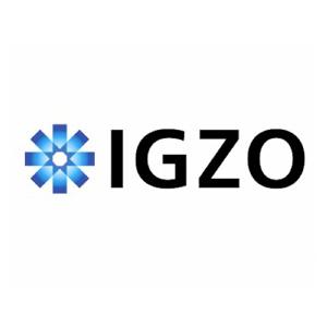 igzo_ipad
