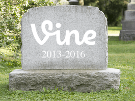 vine, vine is shutting down