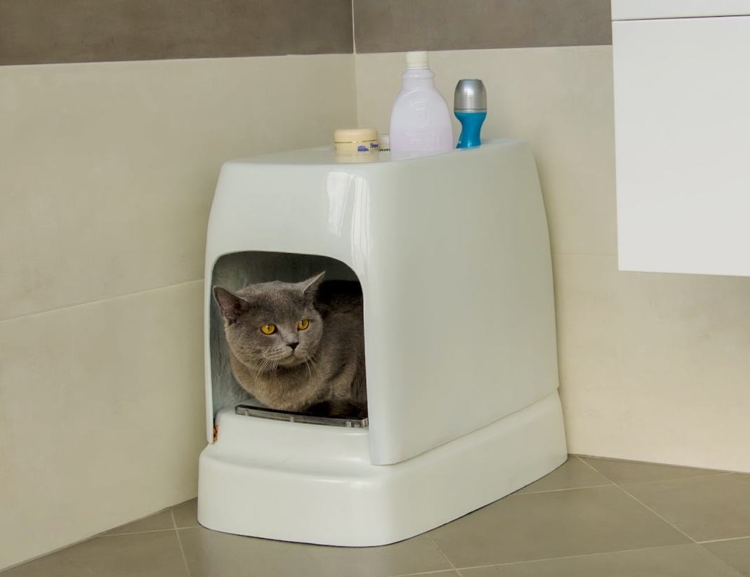 CATOLET Smart Automatic Litter Box 01