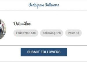 Hublaagram followers