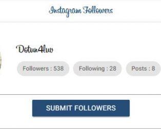 Hublaagram followers