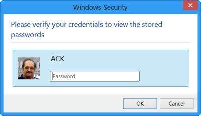 Internet Explorer Password Manager