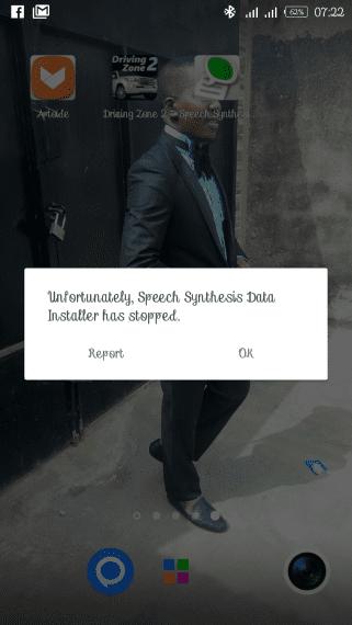 Speech Synthesis Data Installer