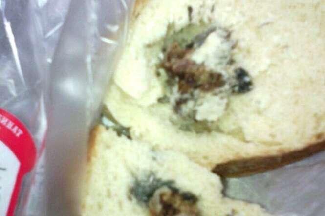 Mulher fica horrorizada ao cortar pão e encontrar cabeça decepada de rato