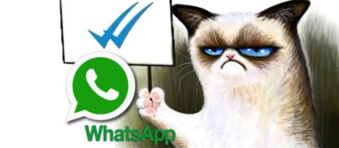 Ya puedes desactivar el doble check azul de WhatsApp