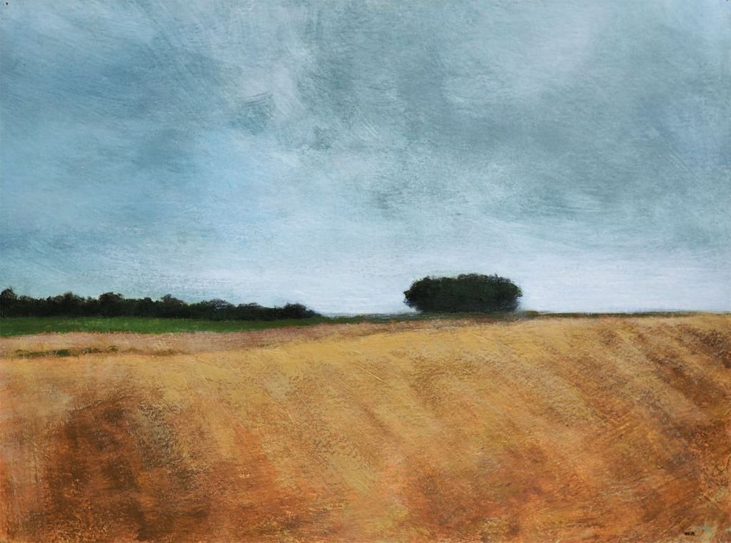 Grey sky over yellow field.