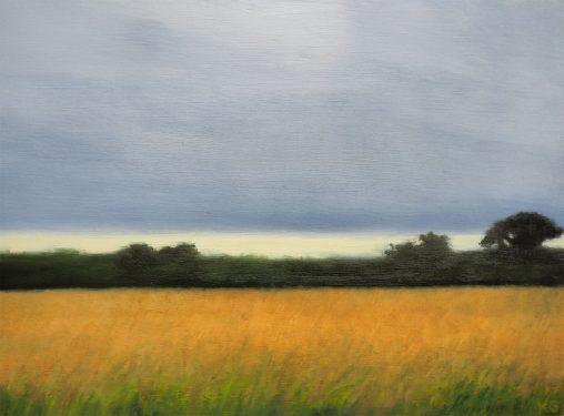 Field in the north Kendra Gadzala