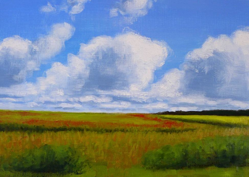 Green fields and blue skies by Kendra Gadzala