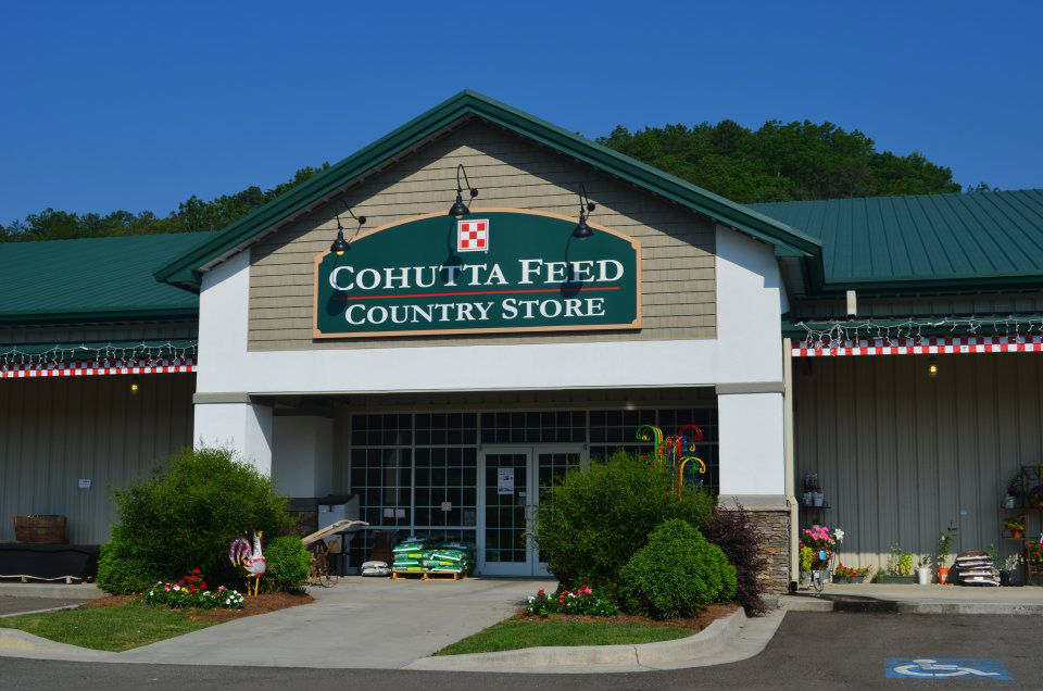Cohutta Country Store in Blue Ridge, Georgia