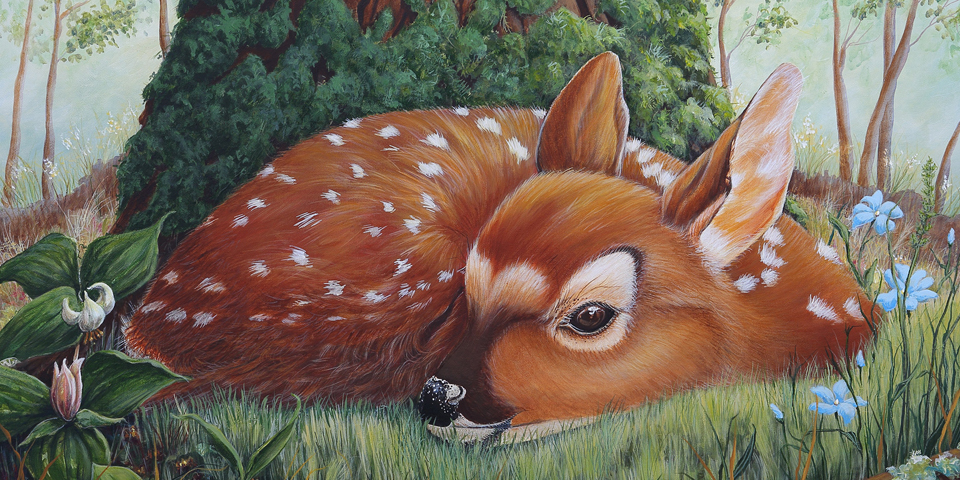 Deb Collins fawn painting