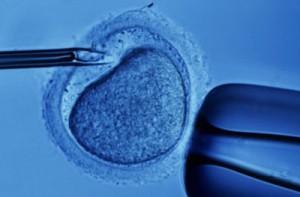 fecondazione-in-vitro-2