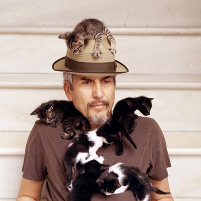 Howe Gelb cats