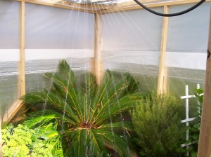 Do-It-Yourself-Greenhouse-Sprinkler System