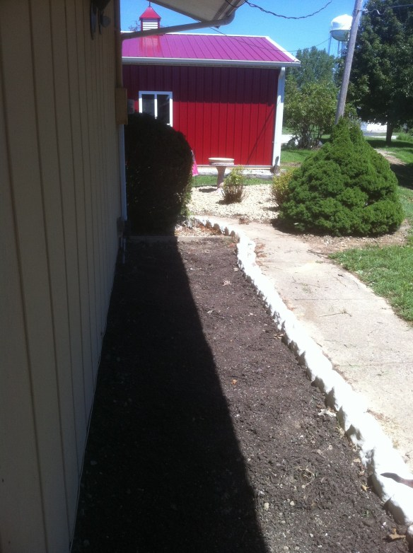 Gaga's Garden new rose bed in planning stage