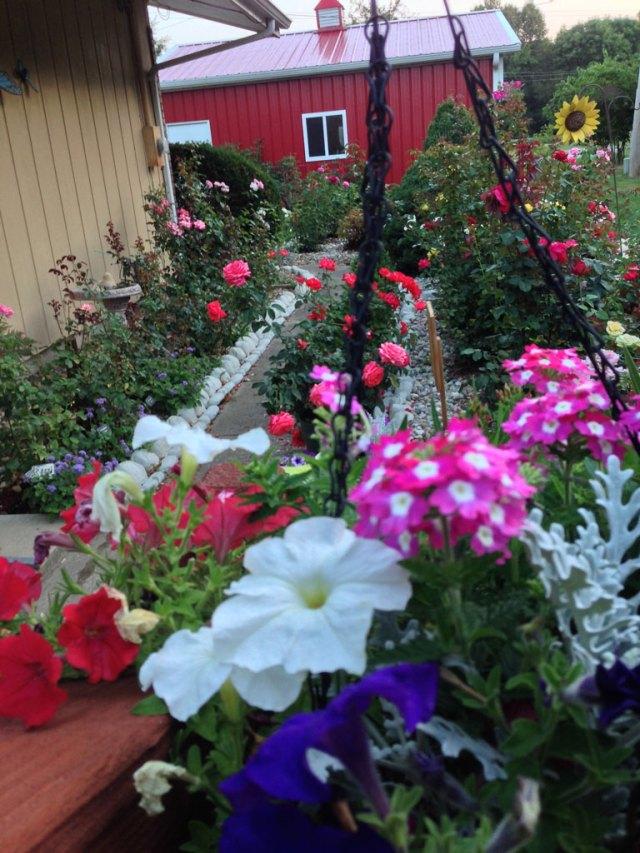 A Gaga's Garden View in July