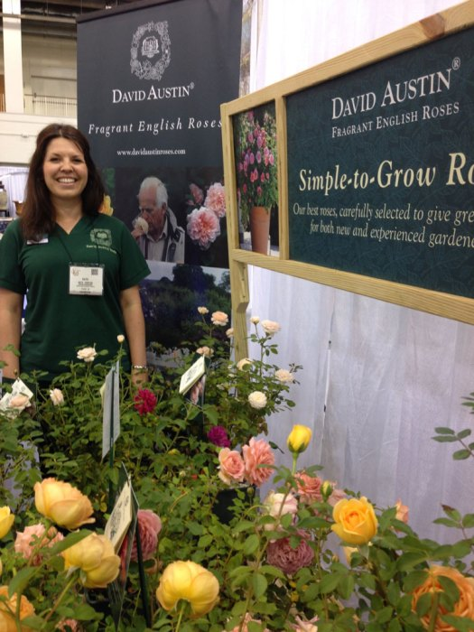 Kate Porter from David Austin Roses, UK