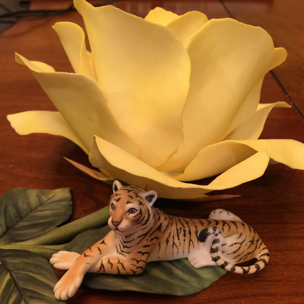 Rose With Tiger by Fleur Cowles of Connoisseur of Malvern
