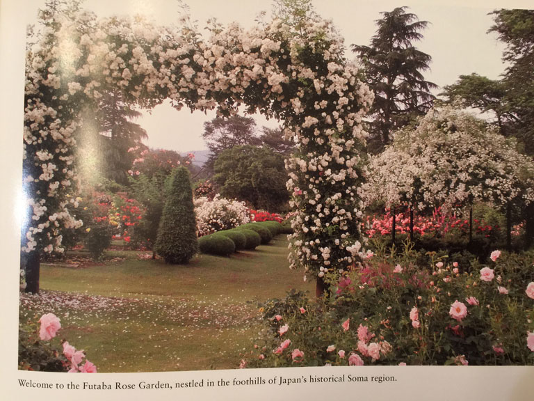 The Rose Garden of Fukushima Archway Before