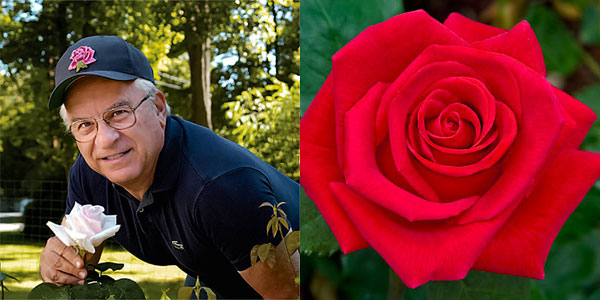 John Mattia | holding and his American Rose Magazine cover feature 'Veterans Honor' winner of the Digital Photography Hybrid Tea Award Winning 'Veterans Honor'