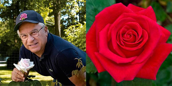 John Mattia | holding and his American Rose Magazine cover feature 'Veterans Honor' winner of the Digital Photography Hybrid Tea Award Winning 'Veterans Honor'