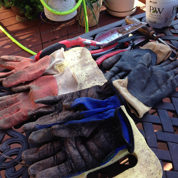 Gloves from Gaga's Garden and Corona Tools By-Pass Convertible Pruners