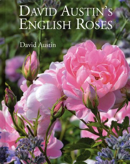 David Austin's 'ENGLISH ROSES'
