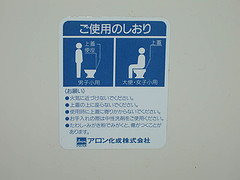 how to use a Western toilet (Erica's bathroom)