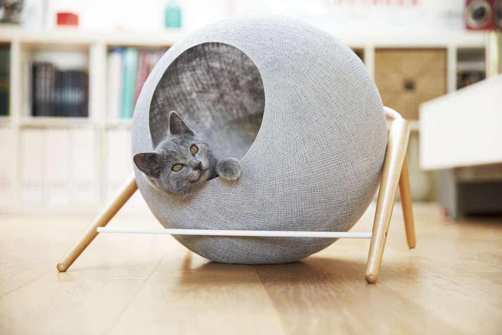 Oggetti di Design per Cani, Gatti e Padroni: 10 Spettacolari Idee Regalo