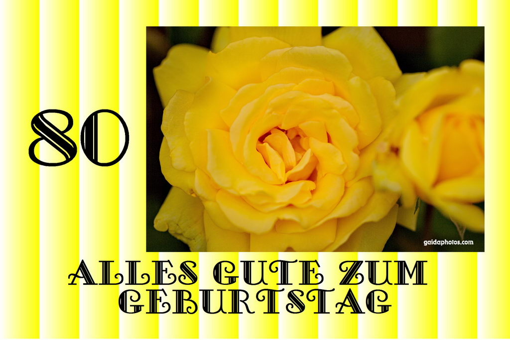 Karte Zum 80 Geburtstag Rose gelb