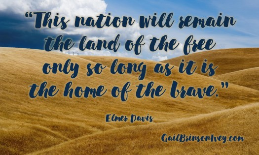 "Patriotic quote: ""This nation will remain the land of the free only so long as it is the home of the brave."" Elmer Davis"