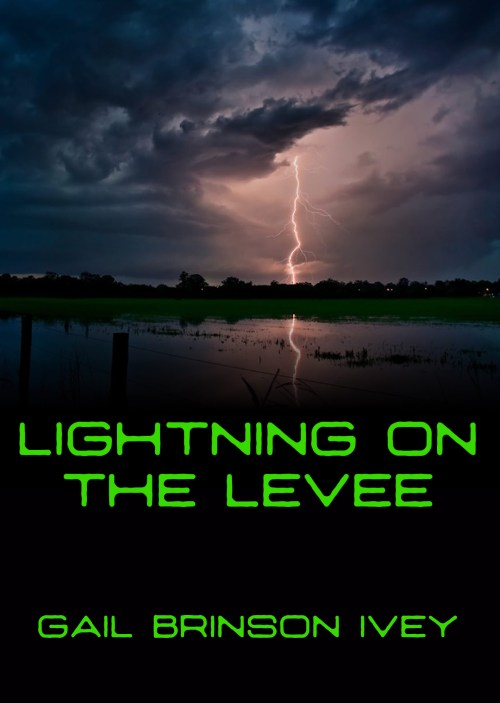 Lightning on the Levee